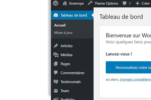 capture d'écran tableau de bord wordpress custom types article page